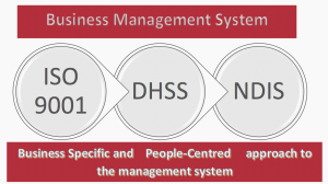 Image showing Interaction of NDIS, DHSS and ISO9001 standards